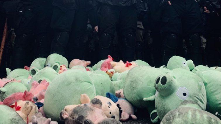 «Под крики» Позор «забросали свиньями»: В Сети обсуждают встречу Порошенко с активистами в Полтаве. Что будет дальше?