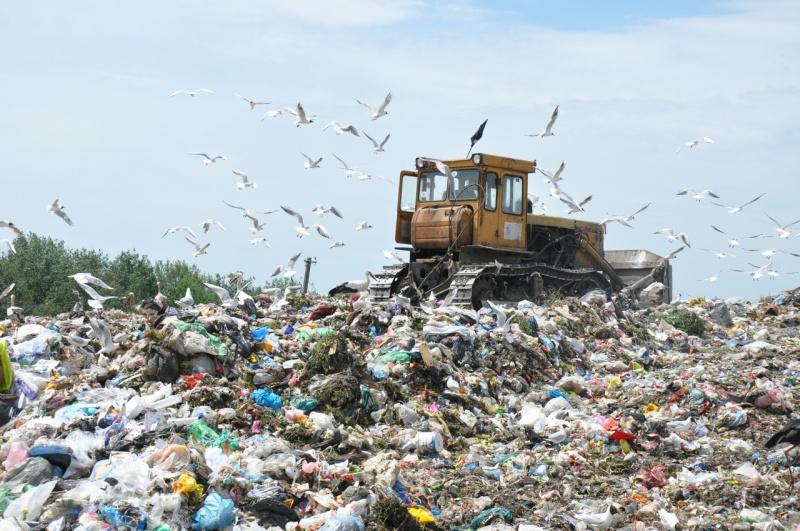 Трагедия на Львовщине: на мусорной свалке снова погиб человек, еще двое чудом спаслись
