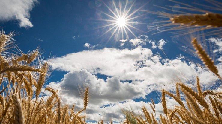 Весна уже вступила во власть: погода в Украине на неделю