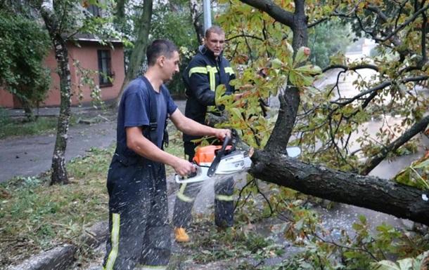 Первая жертва непогоды в Киеве: поваленное ветром дерево убило человека