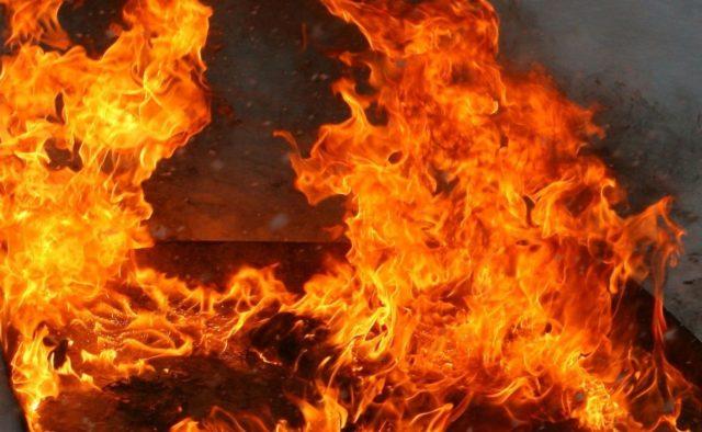 Горит до сих пор, гасить никто не будет! На Луганщине произошел масштабный пожар на заминированной территории: есть пострадавшие