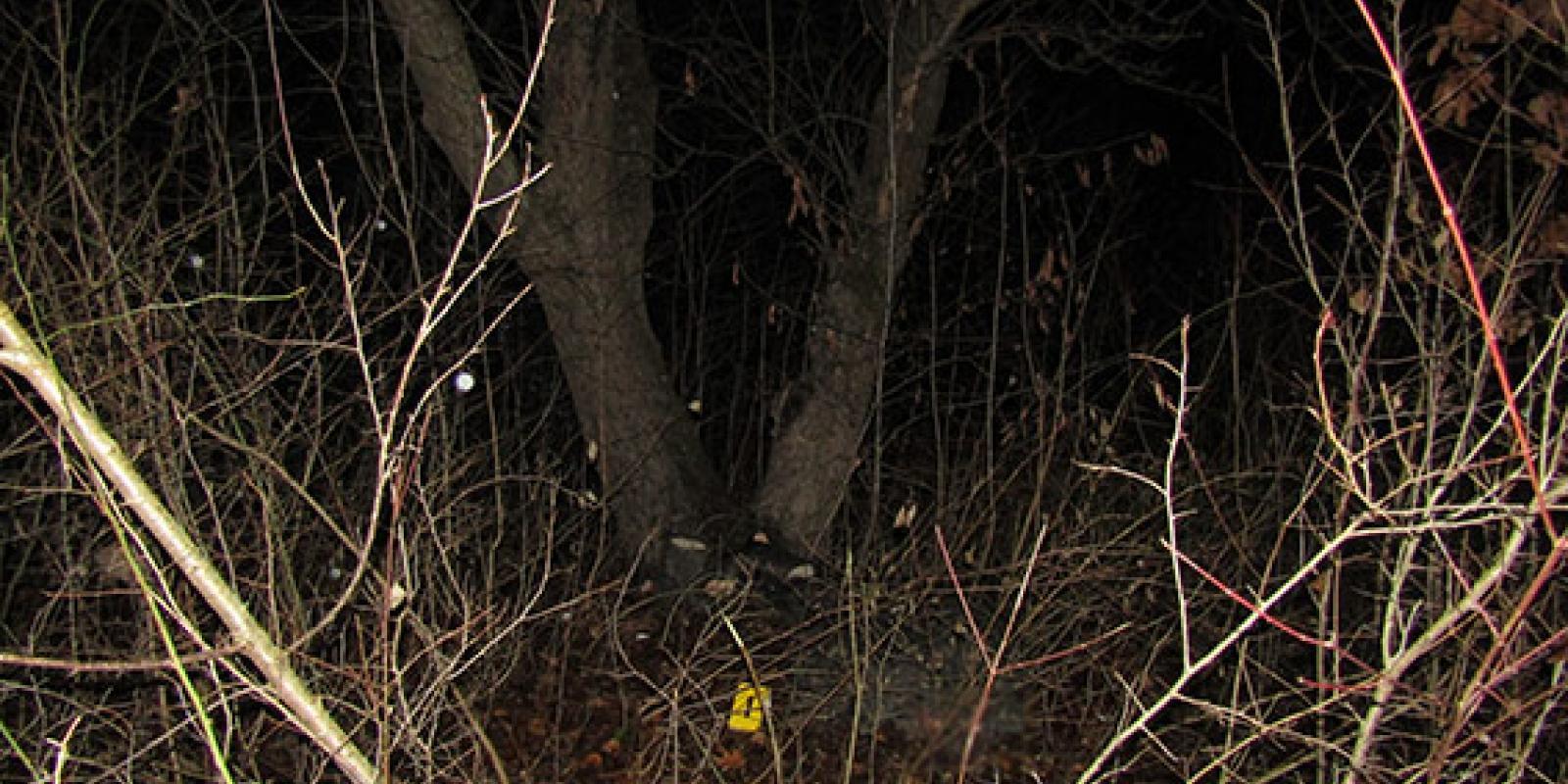 «Будут убивать — звоните»: В кустах нашли изуродованное тело известной активистки