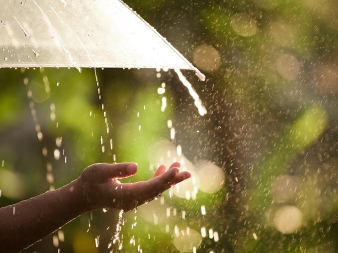 Илья придет — дождь нагонит: Прохладная и дождливая погода будет в Украине в конце недели