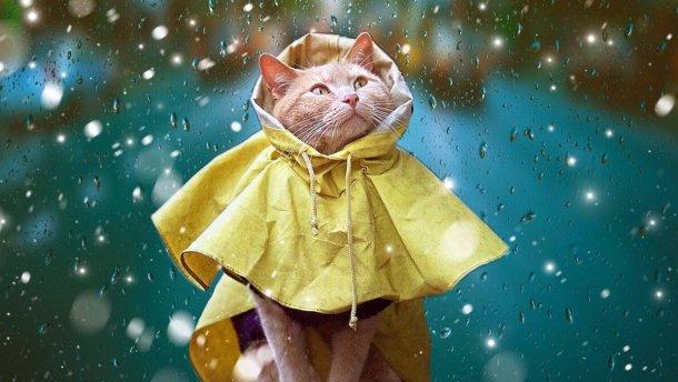 Устали от холода? Встречайте немного лета! Погода в воскресенье удивит украинцев