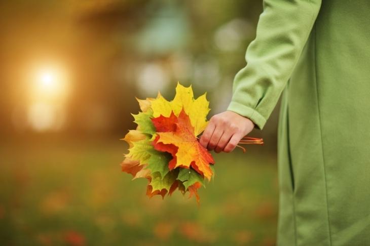 Осень наступает на пятки: синоптики спрогнозировали постепенное похолодание. До +5 градусов!