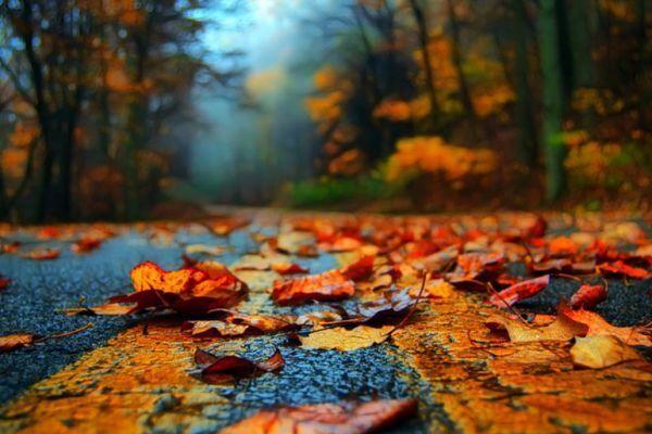 Держите голову в равновесии! Прогноз погоды на 1 ноября