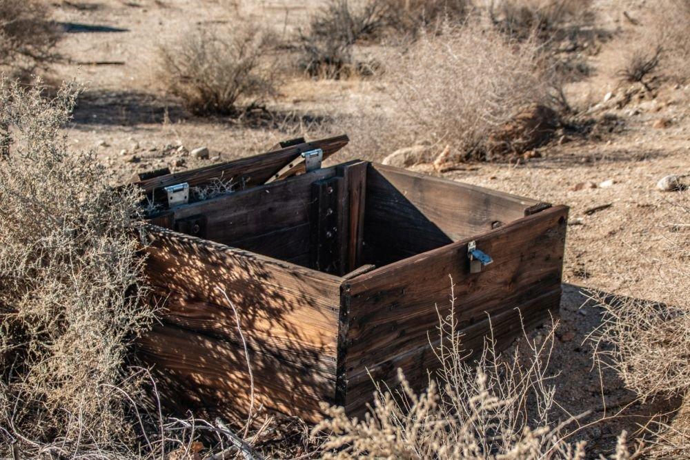 «Тело нашли в ящике, залитом цементом»: Известная модель погибла страшной смертью. Всего 24 года