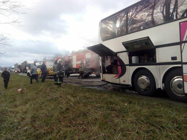 Собирали по частям: всплыли отвратительные подробности жуткой аварии украинского автобуса в Польше. Страшно смотреть!