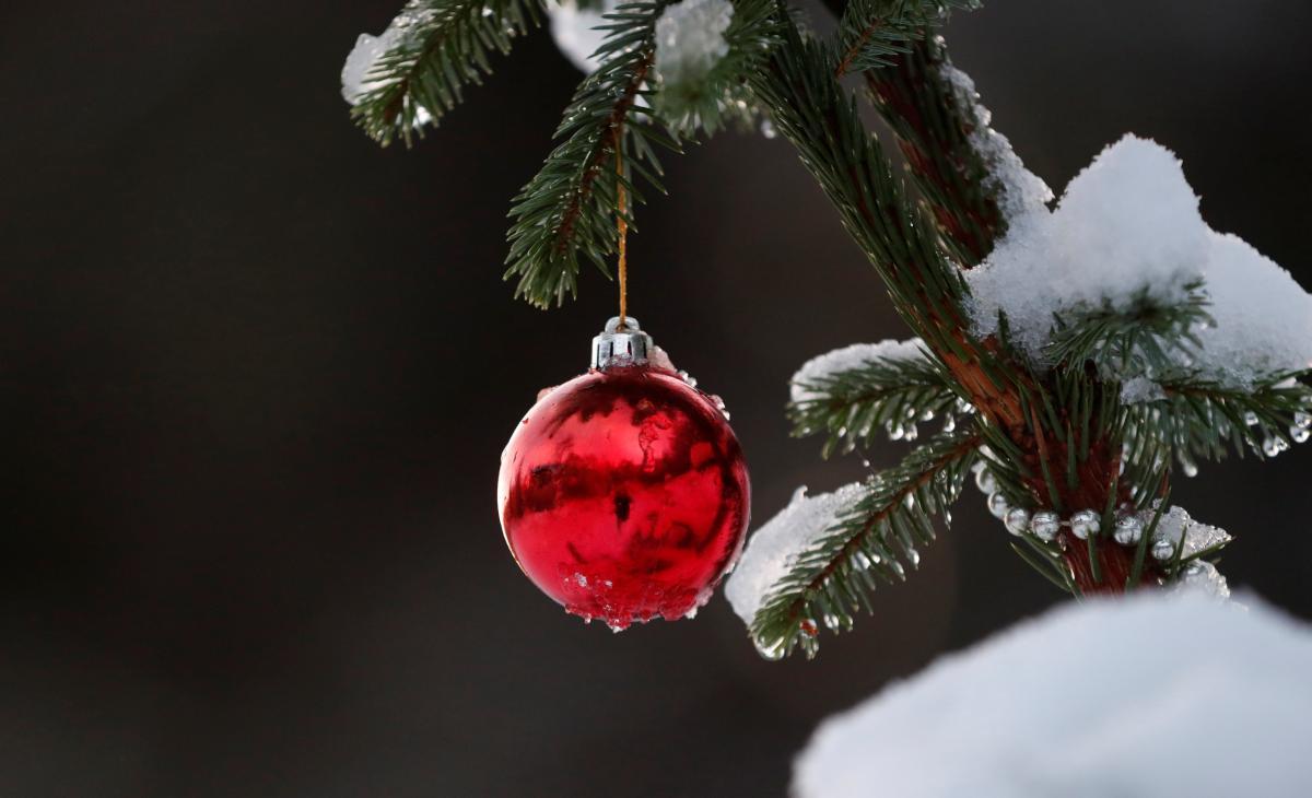Зимы не будет! Синоптики поразила прогнозом погоды на Новый год. Все резко изменилось