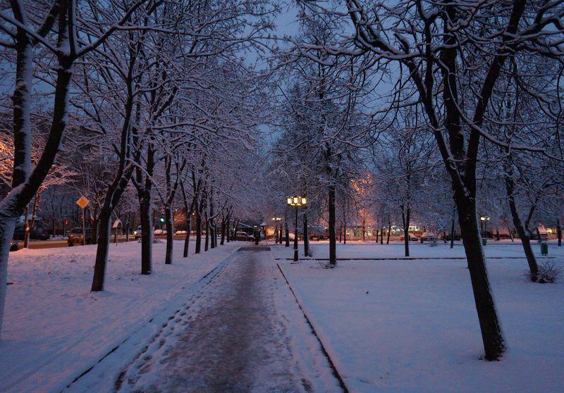 Синоптики предупреждают! Ухудшение погоды уже этих выходных: все приближается к зиме