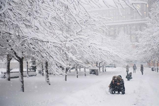 «Жгучие морозы до -39 и сильные ветры»: Синоптики ошарашили прогнозом погоды на январь