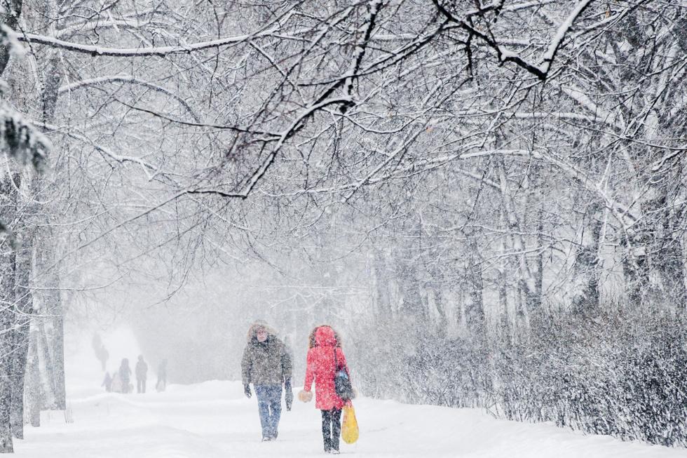 Погода в новом году встретит «коллапсом». Чего ждать украинцам в первые дни зимы?