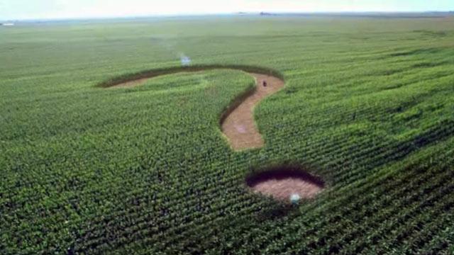 «Может произойти колоссальная афера»: Рада продлила мораторий на продажу земли