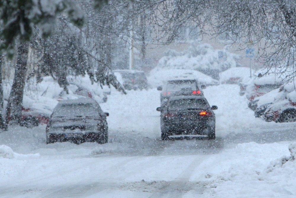 «Снег до 30 см, мощная метель и гололедица»: В Украине объявлено штормовое предупреждение