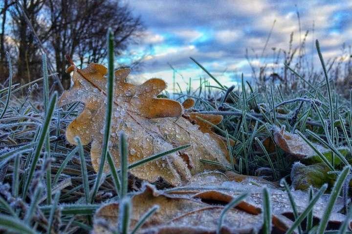«Зима снова отступает»: Синоптики порадовали прогнозом погоды на выходные