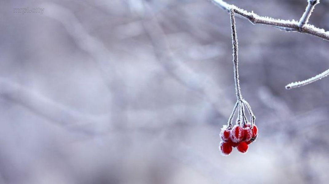Немного снега все-таки будет! Что ждет украинцев уже завтра? Погода обещает резкие изменения