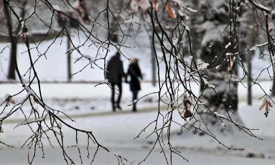 Прощаемся с зимой. Синоптики дали утешительный прогноз: тепло и солнечно
