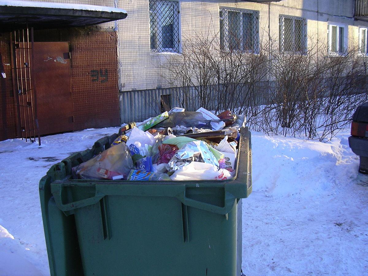 В день святого Валентина: в мусорном мешке киевлянин обнаружил голову тещи