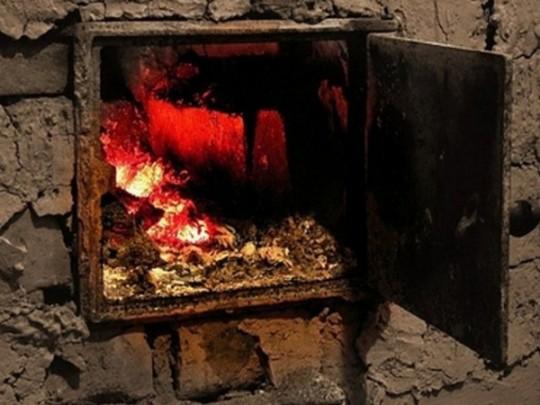 Мама уехала по делам: бабушка и дедушка заживо сожгли крошечного внука