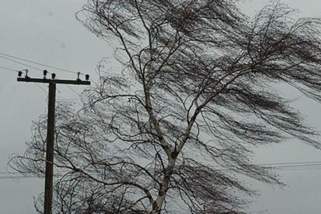 В Украине объявлено штормовое предупреждение! Чего ждать от погоды в воскресенье