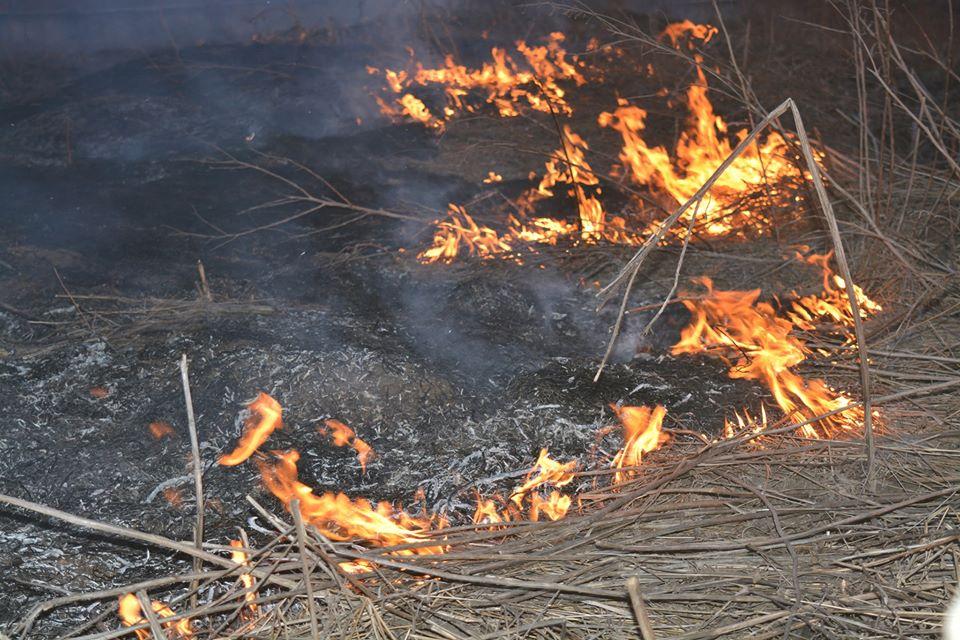 Огонь уже около домов: ужасные последствия «адского» обстрела в Донбассе. Вокруг дым и пламя