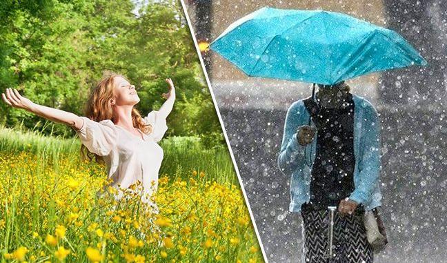 «На днях ощутимо потеплеет»: прогноз погоды на первые летние выходные. «Местами дожди»
