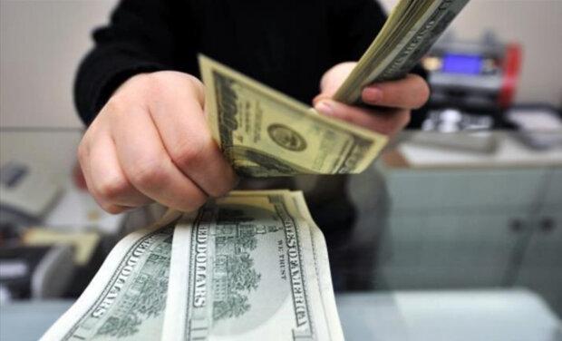 Без паники! Что будет с курсом валют в ближайшее время. «Пока нет нового главы НБУ»