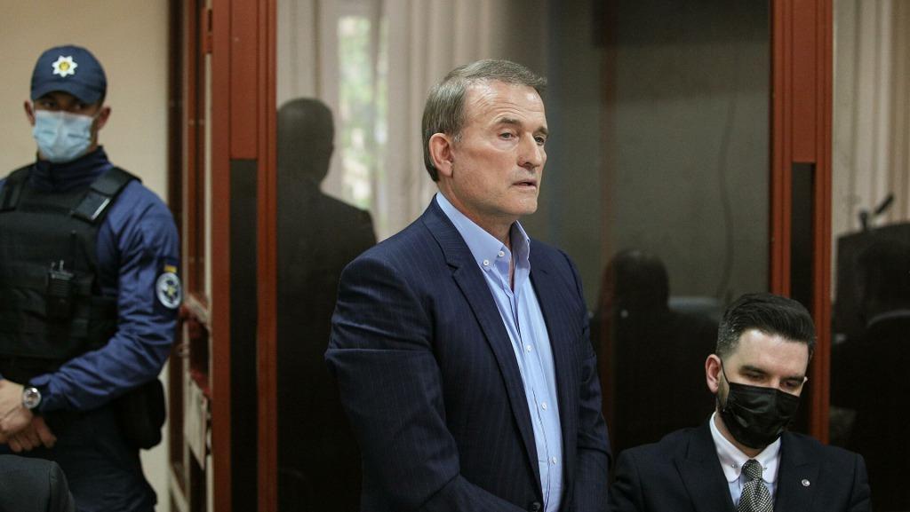 «Обвинение могло быть и сильнее» : «слуга народа» высказалась о деле Медведчука