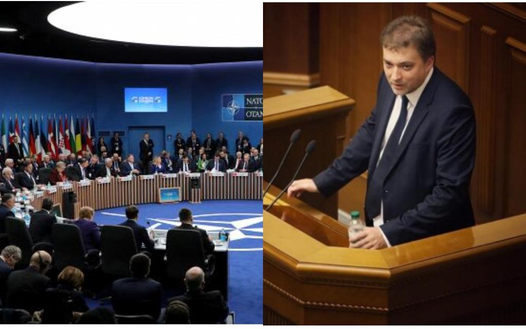 Историческое событие — экс-министр высказался о решении саммита НАТО насчет Украины